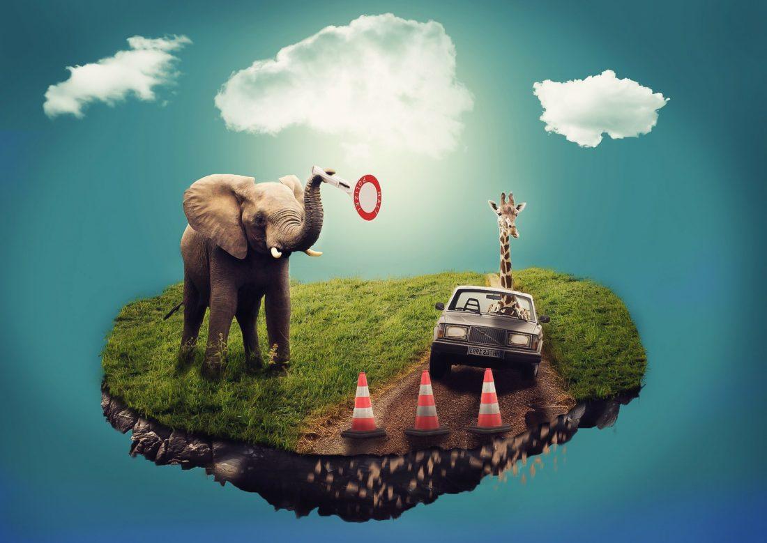 夢の映像、象やキリンと車がいる大地が浮かんでいる