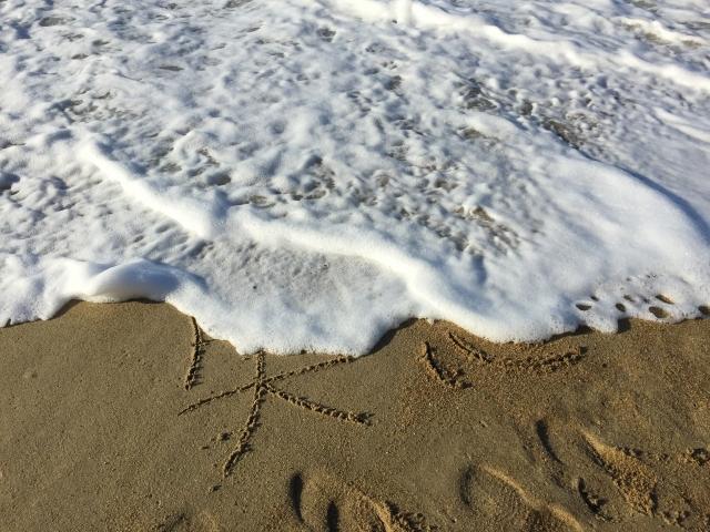 波打ち際の画像