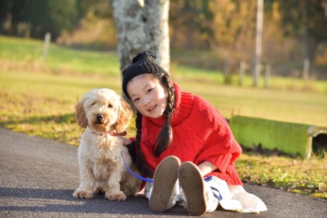 犬と子供の画像