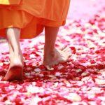 花が敷き詰められた道を歩く僧