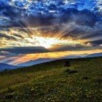 地平線から朝日が出ている草原